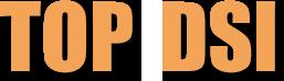 logo-TOP-DSI